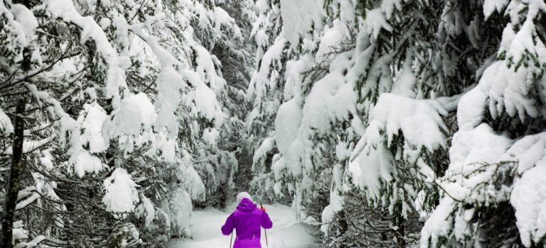 Aktiv vinterferie på ski